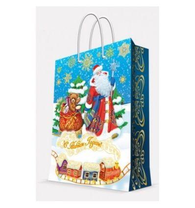 """Пакет бумажный """"Дед Мороз и медвежонок"""", 17,8x22,9x9,8 см"""